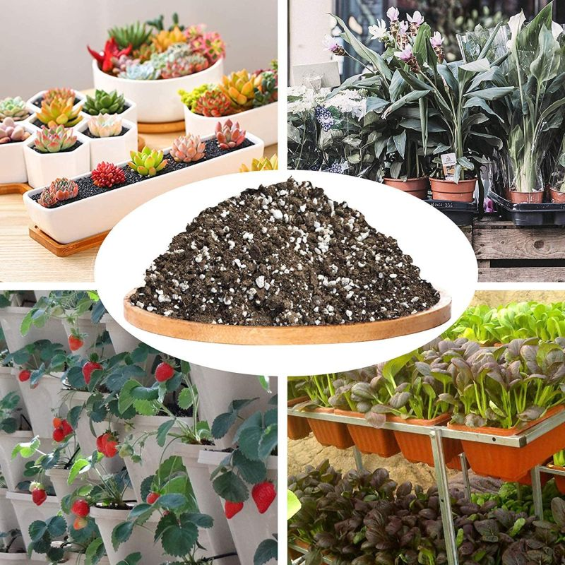 Best for cactus - Professional Grower Potting Soil Mix