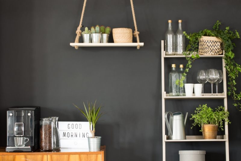 Gorgeous Plant Shelf Ideas You Can Take Inspiration From