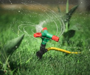 Consider Installing an Above Ground Sprinkler This Year
