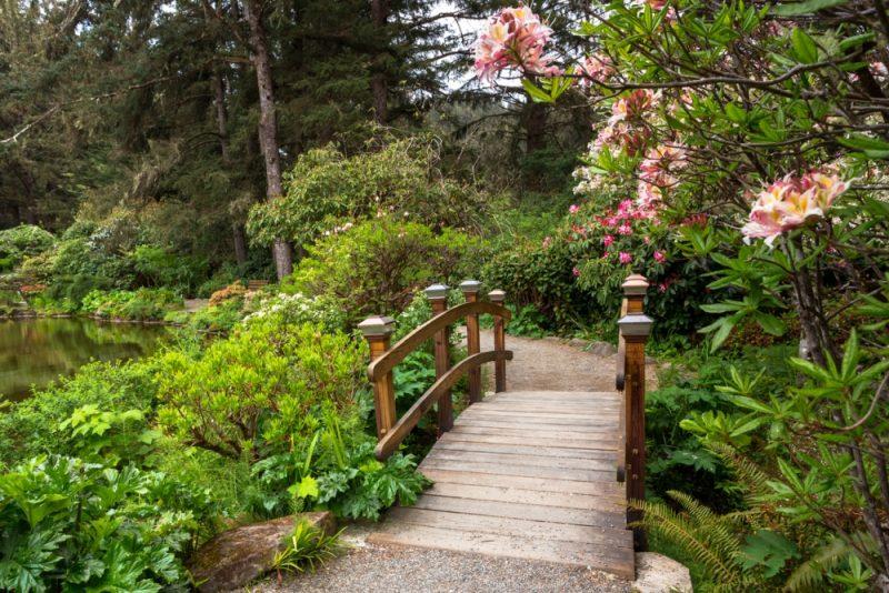 How To Create An Authentic Backyard Japanese Garden