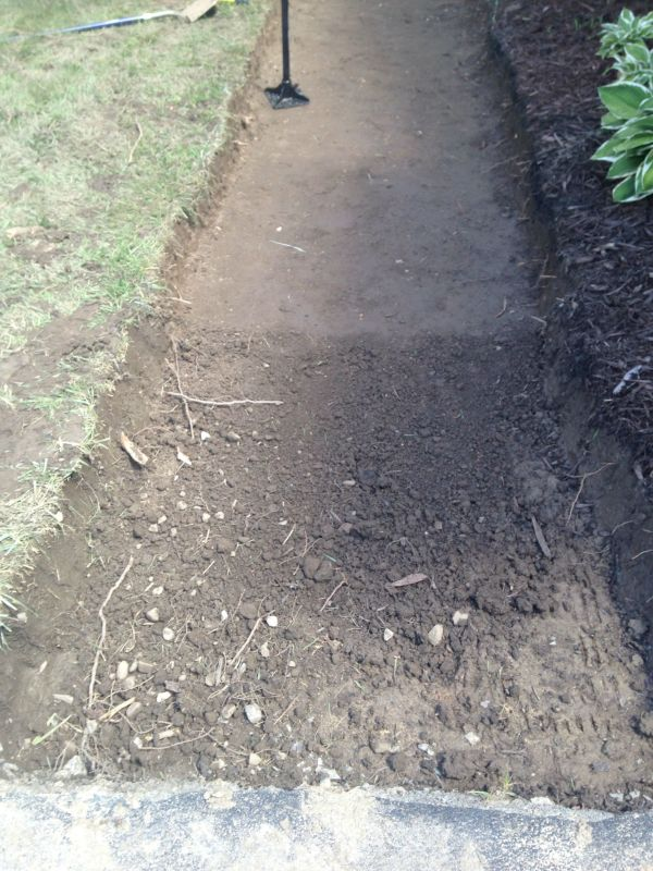 Step 4: Tamp The Dirt