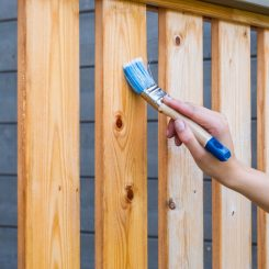 Water-based VS Oil-based Fence Stain