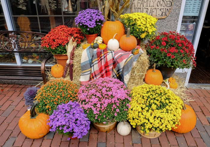 9 Gorgeous Fall Flowerpot Ideas Will Have You Ready for The Season in No Time