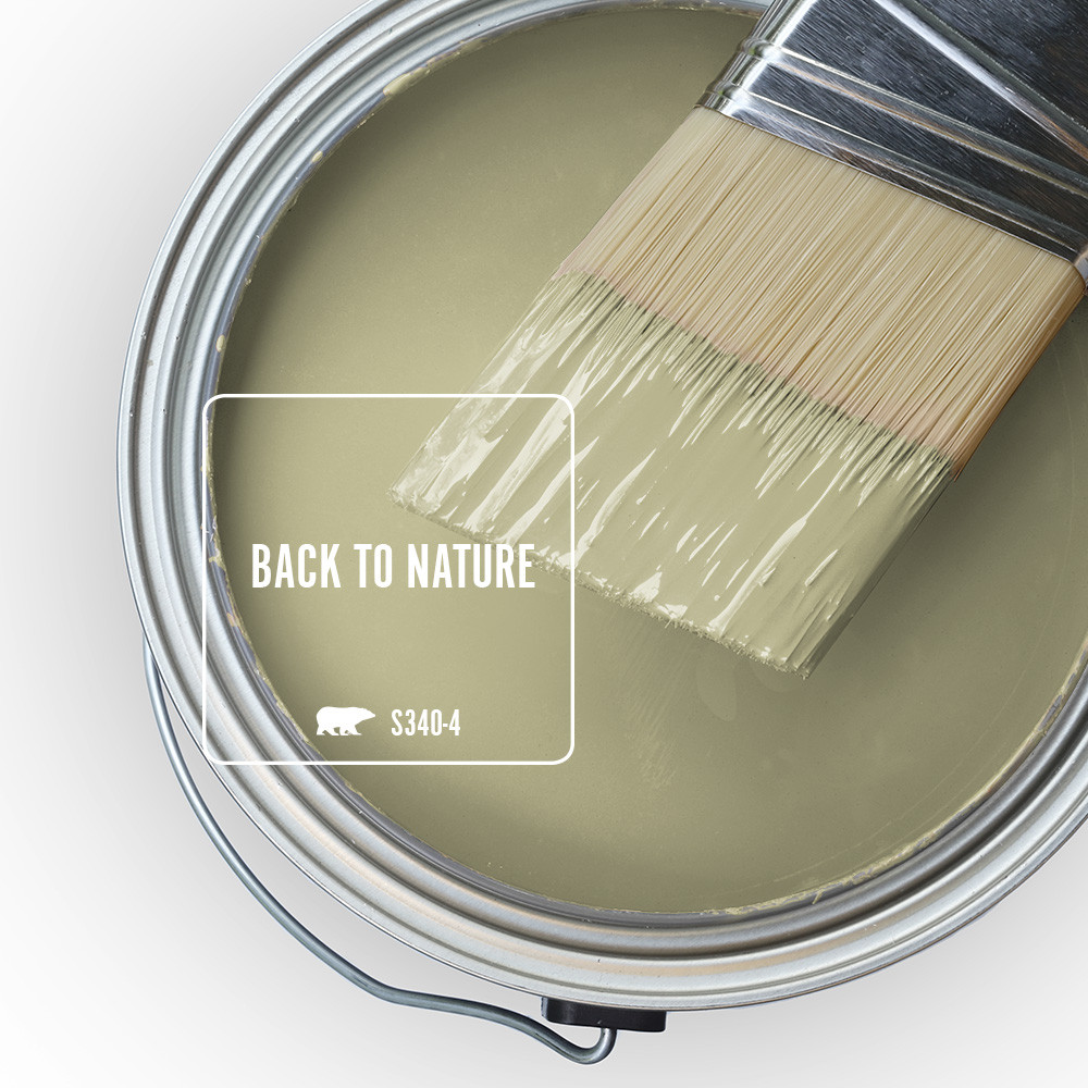 Color Of The Year 2020: Back To Nature