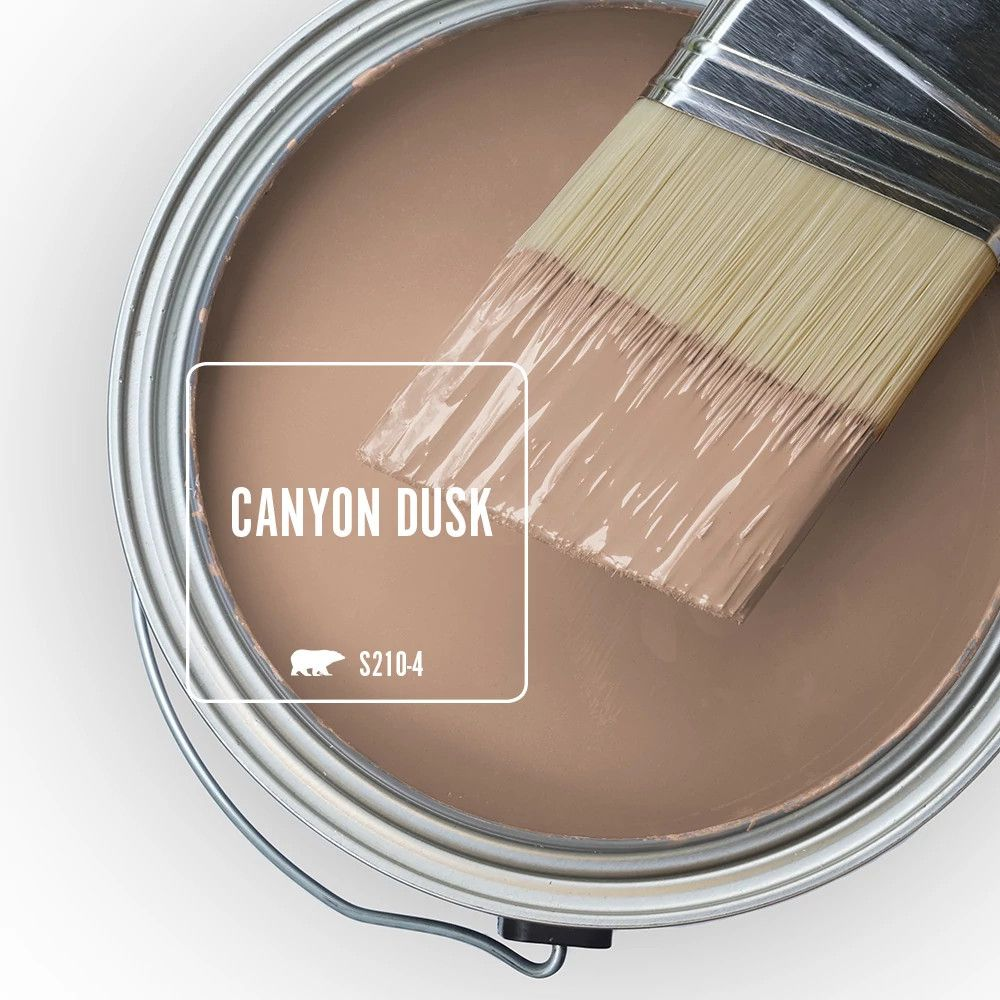 Color Of The Year 2021: Canyon Dusk