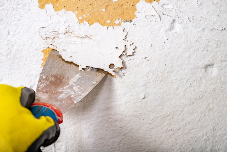 Removing Old Paint
