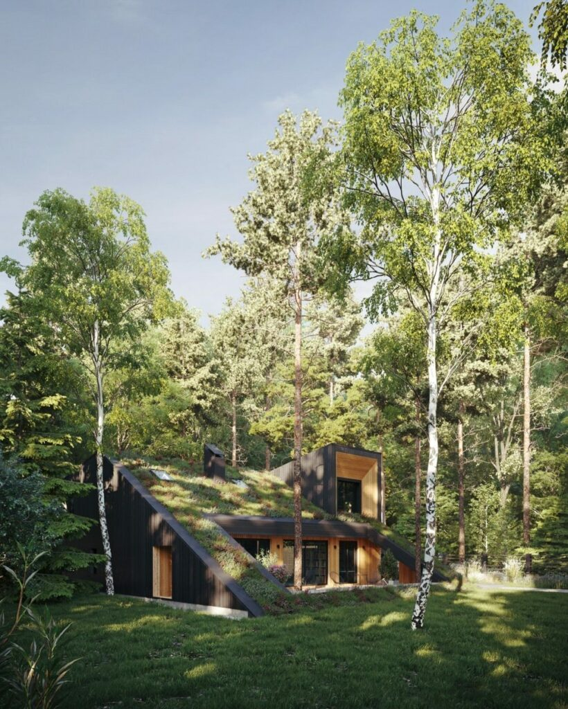 The HillHouse With Slope Green Roof by Snegiri Architects