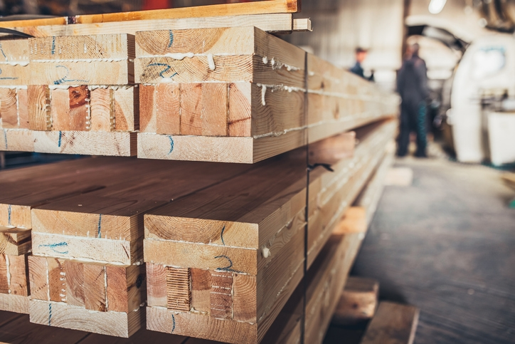 What Is Poplar Wood And Where Does It Stand?