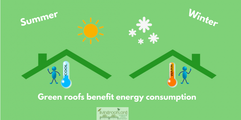 The energy performance of green roofs