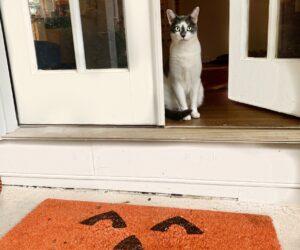 A Dozen Interesting Ways To Make Your Own Custom DIY Fall Doormat